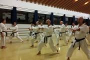 karate-desenzano-10